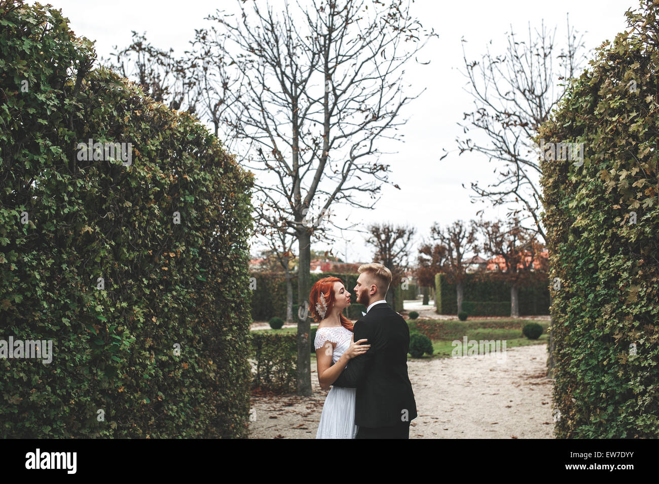 Wedding couple on a walk - Stock Image