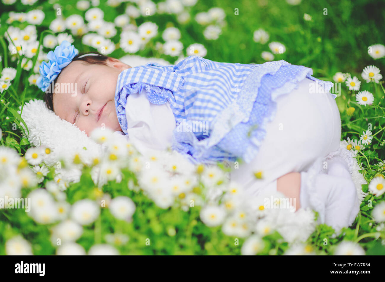 Baby sleeping in a field of daisies Stock Photo: 84379740 - Alamy