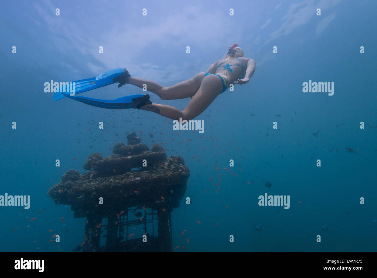 Woman snorkeling by a sunken temple, Bali, Indonesia - Stock Image