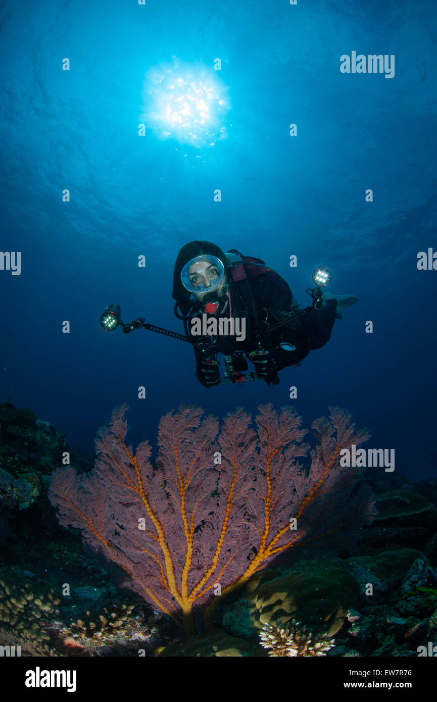 Woman scuba diver photographing coral underwater - Stock Image
