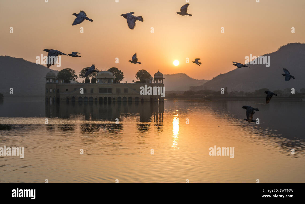 Birds flying over Jal Mahal Palace at sunrise, Jaipur, Rajasthan, India - Stock Image