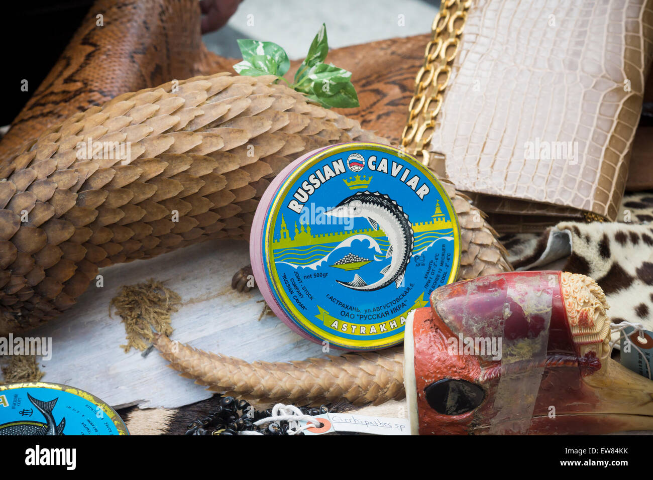 New York, USA. 19th June, 2015. Illegal Russian Caviar and other products from endangered species in Times Square - Stock Image