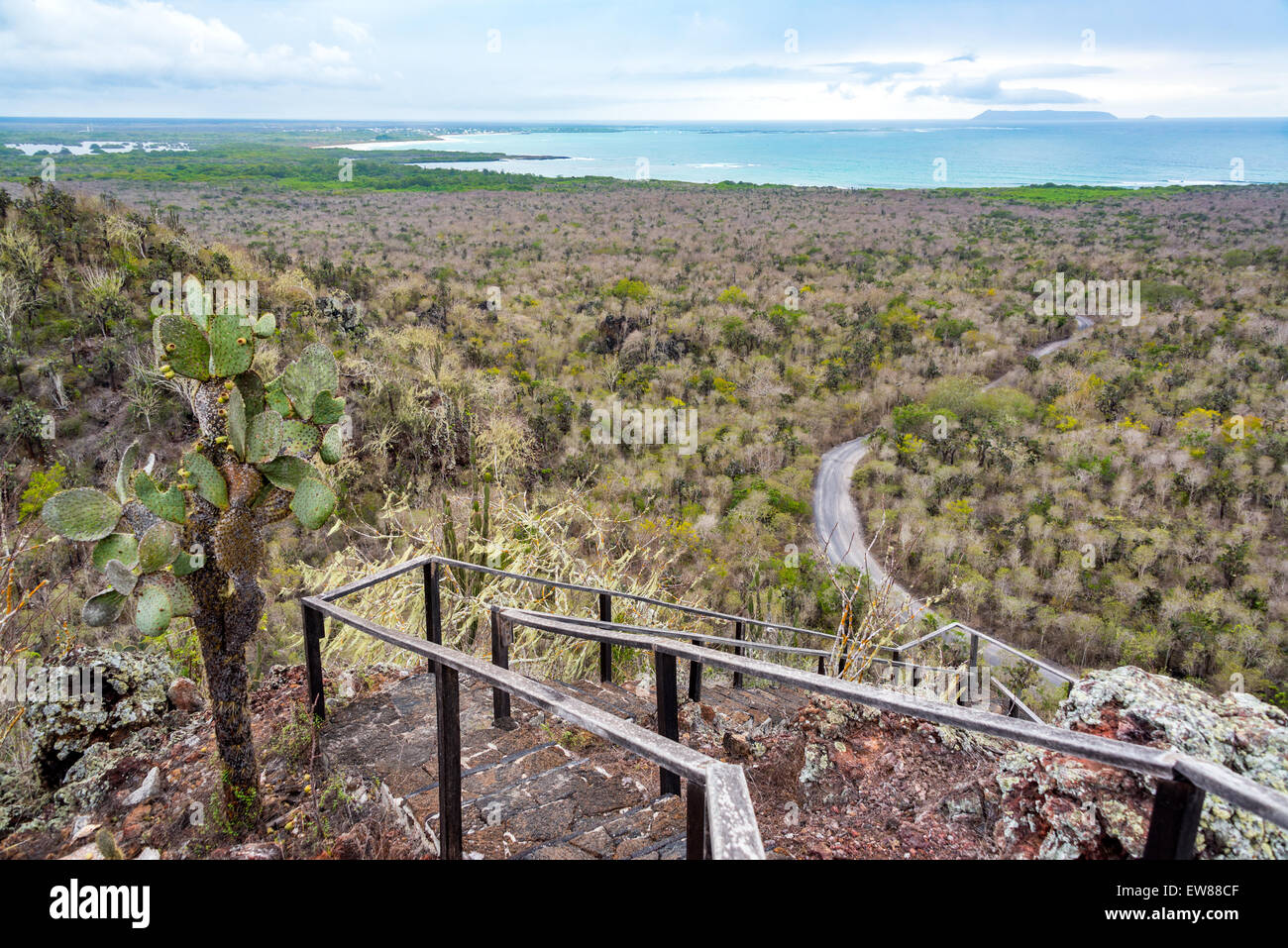 Landscape of Isabela Island in the Galapagos Islands in Ecuador - Stock Image