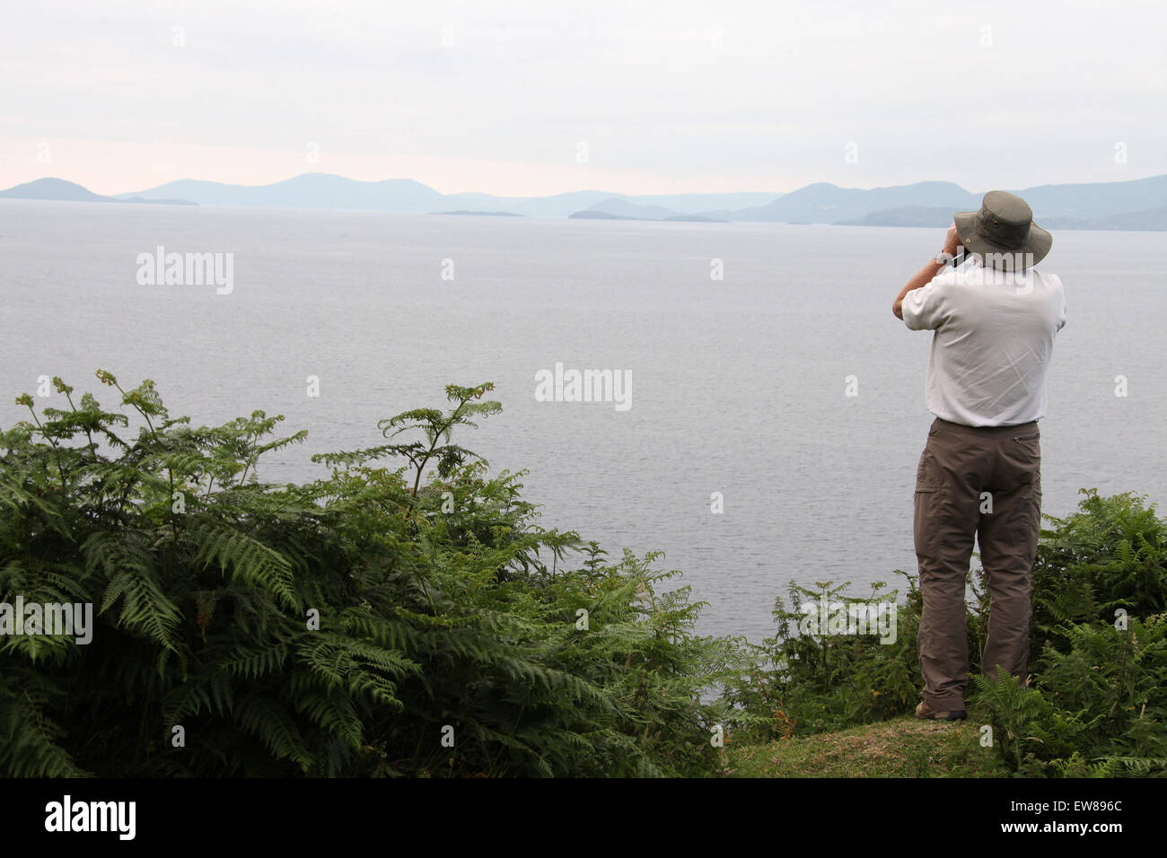 Wildlife spotting on the Beara Peninsula in West Cork - Stock Image
