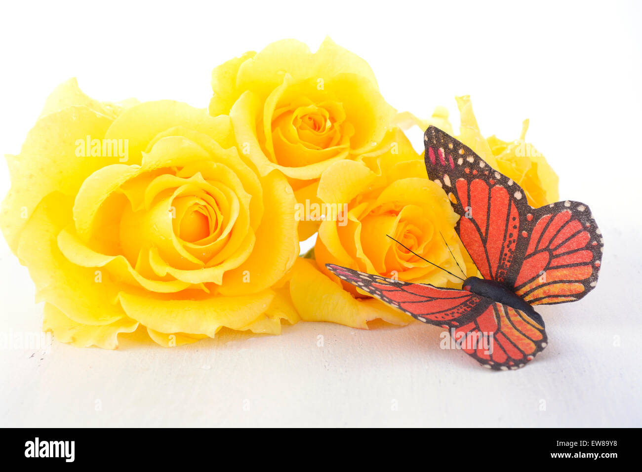 Beautiful Yellow Roses The Symbol Of Love And Friendship With