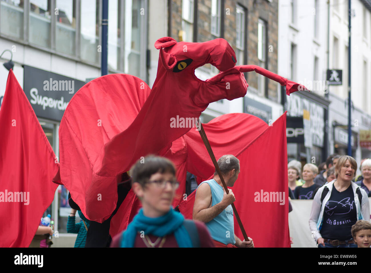Aberystwyth, Ceredigion, West Wales UK, 20th June, 2015. Protesters take to the streets bringing the High St to - Stock Image
