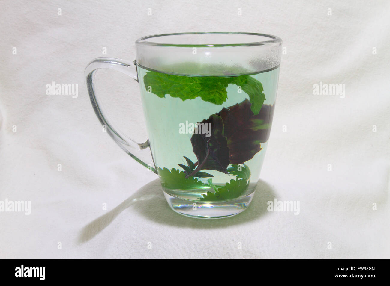 Steam on the rim of a mug filled with fresh herbal tea - Stock Image