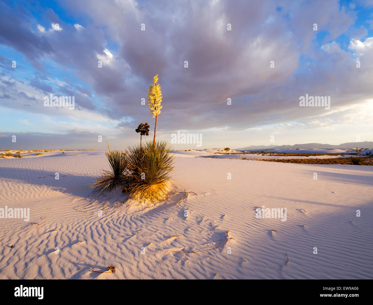 Sunrise over White Sands - New Mexico - Stock Image