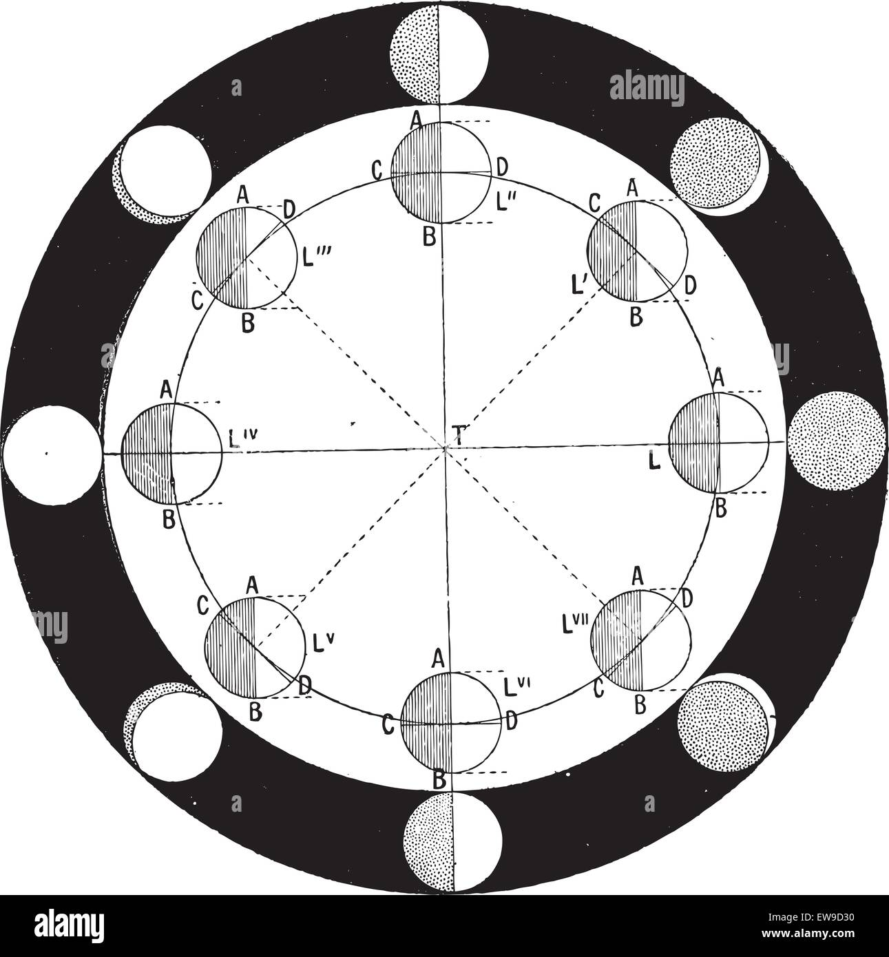 Moon Phases Stock Vector Images Alamy Diagram Phase Of The Or Lunar Vintage Engraved Illustration Dictionary Words And