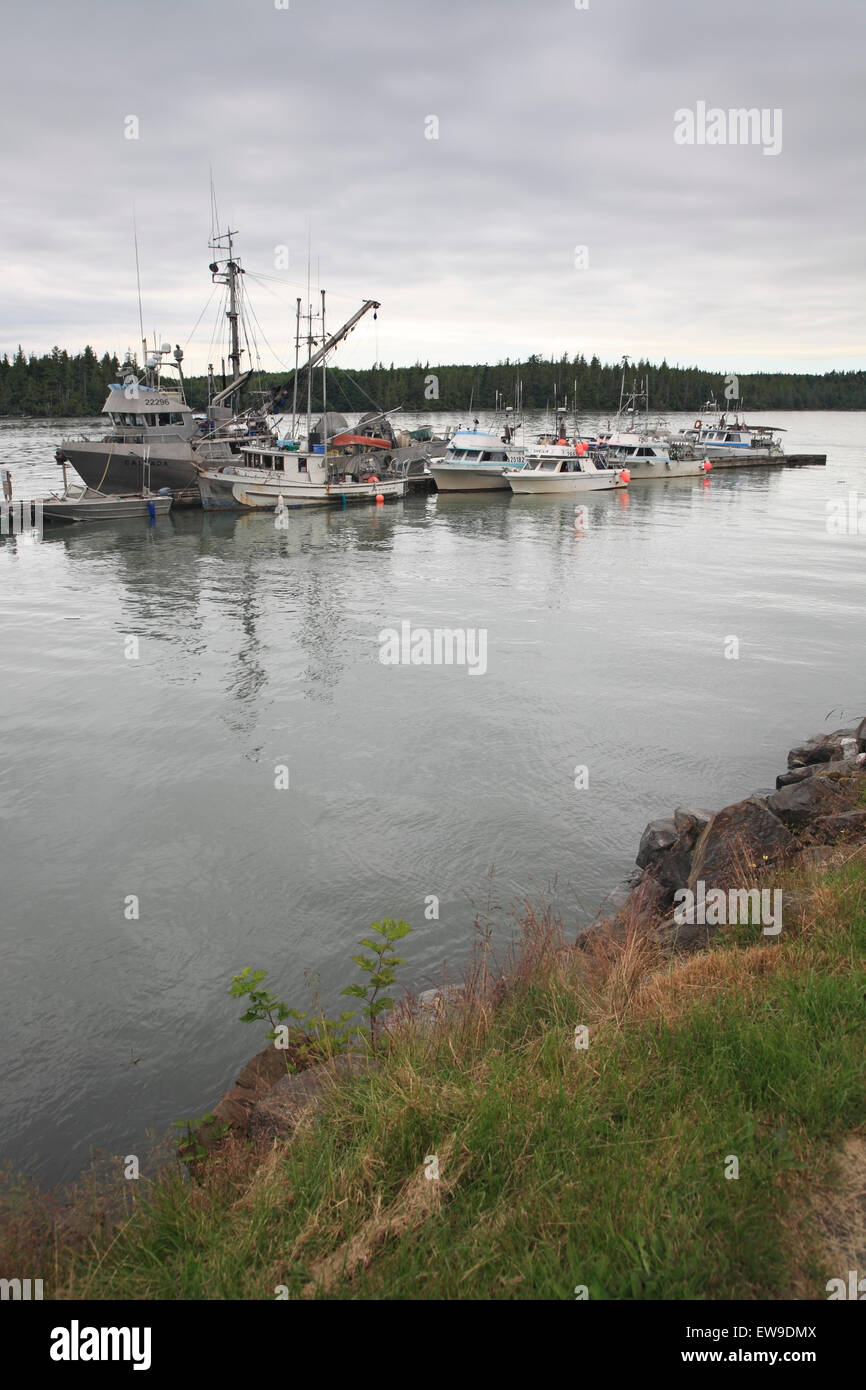 Commercial fishing boats, seiners, and gillnetters, tied up at wharf, Port Edward, Prince Rupert, British Columbia Stock Photo