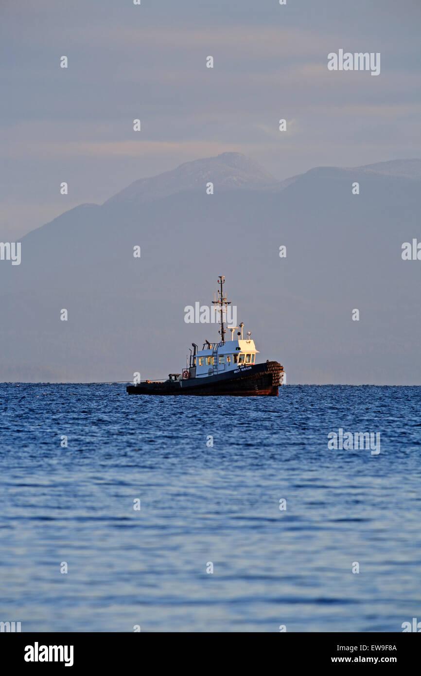 Tugboat pulling log boom in Georgia Strait north of Nanaimo, BC - Stock Image