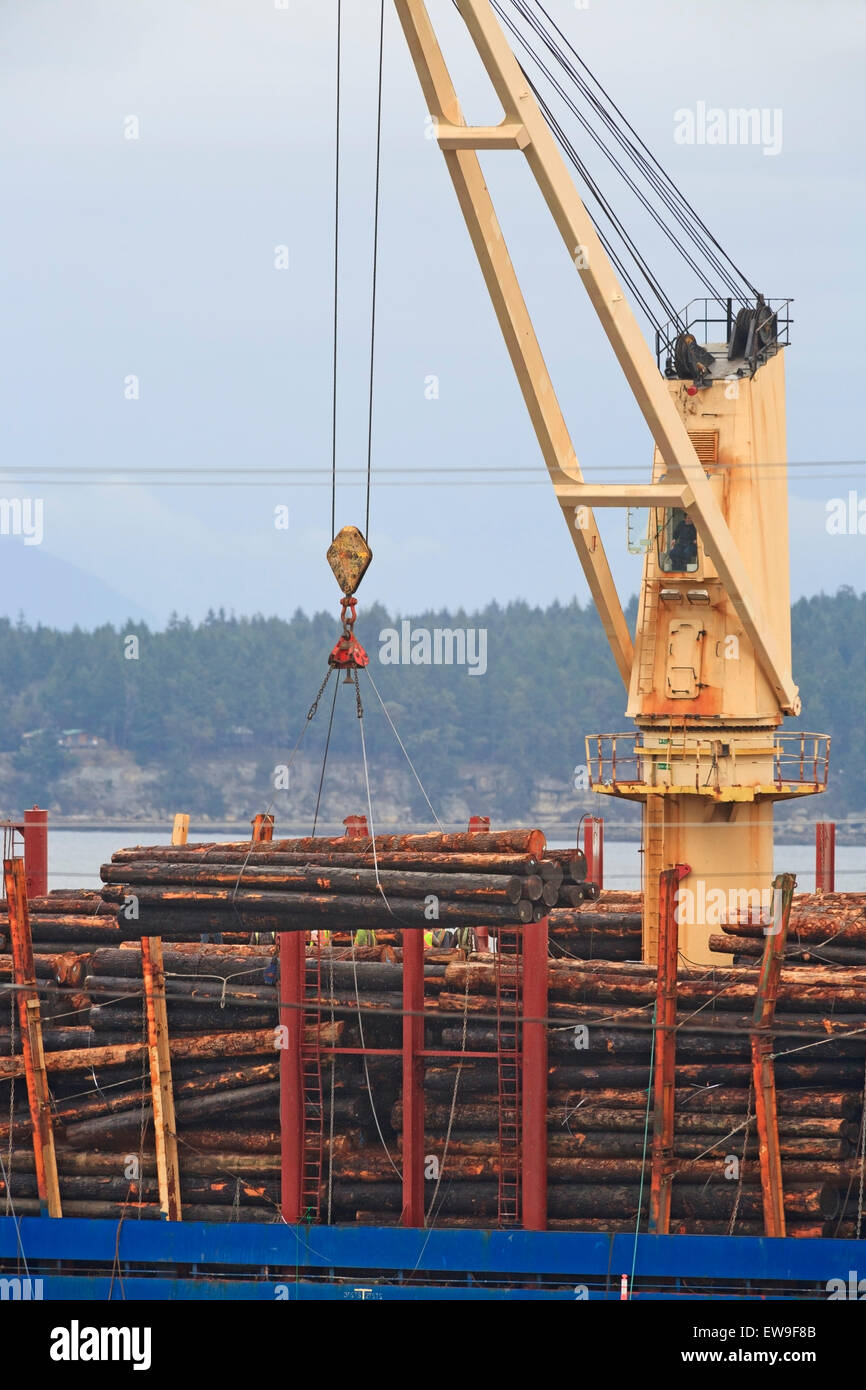 Loading raw logs onto freighter, Nanaimo harbour, Vancouver Island, British Columbia - Stock Image