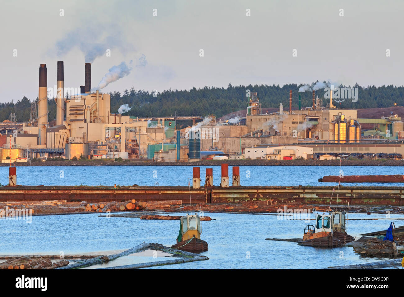 Pulp Mills On Vancouver Island
