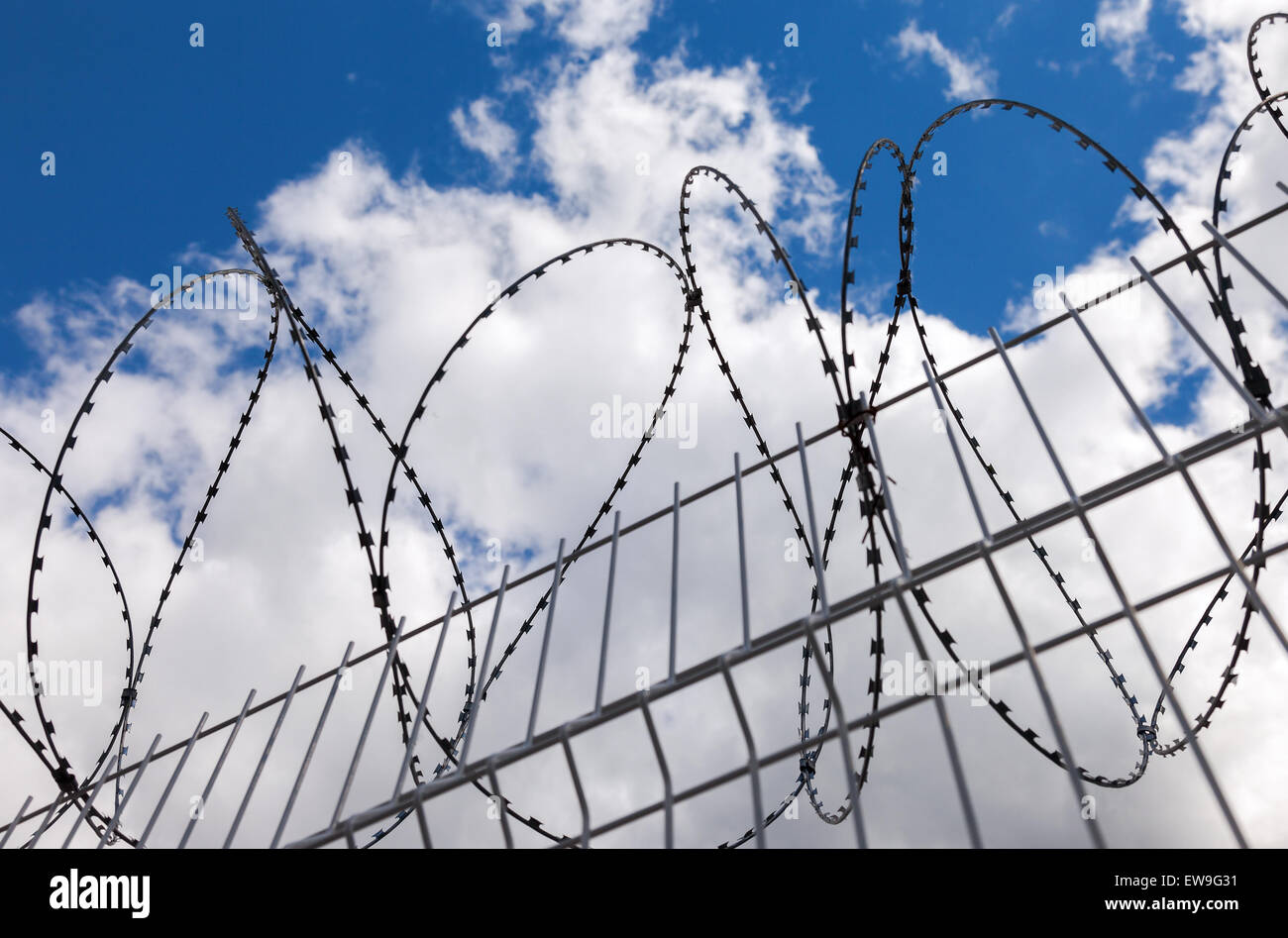 Barbed wire on blue sky background - Stock Image