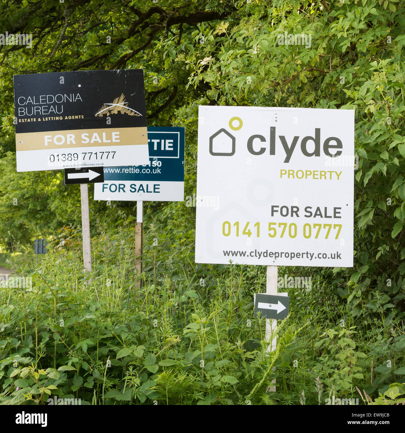 Property for sale signs, Scotland, UK - Stock Image