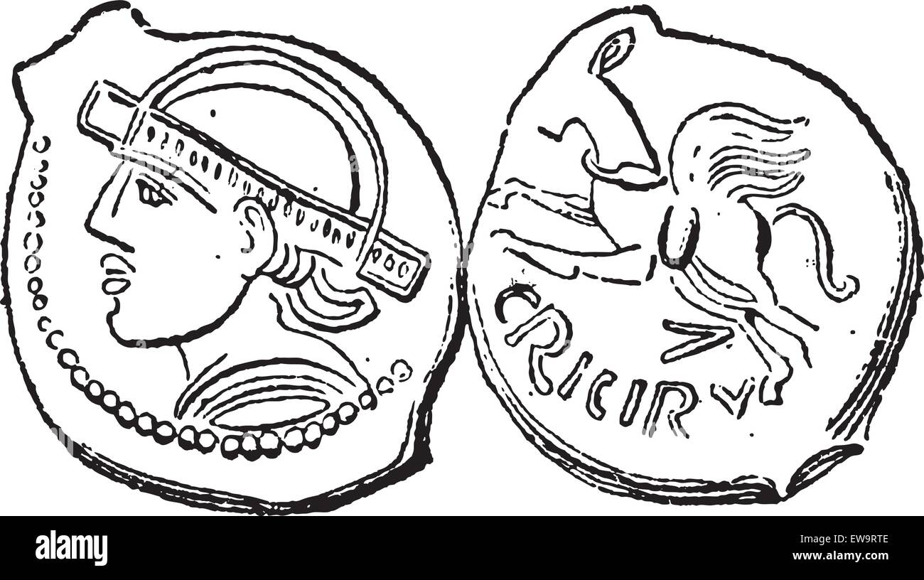 Ancient Bronze Coin, showing Head (front) and Horse (back), vintage engraved illustration. Dictionary of Words and - Stock Vector