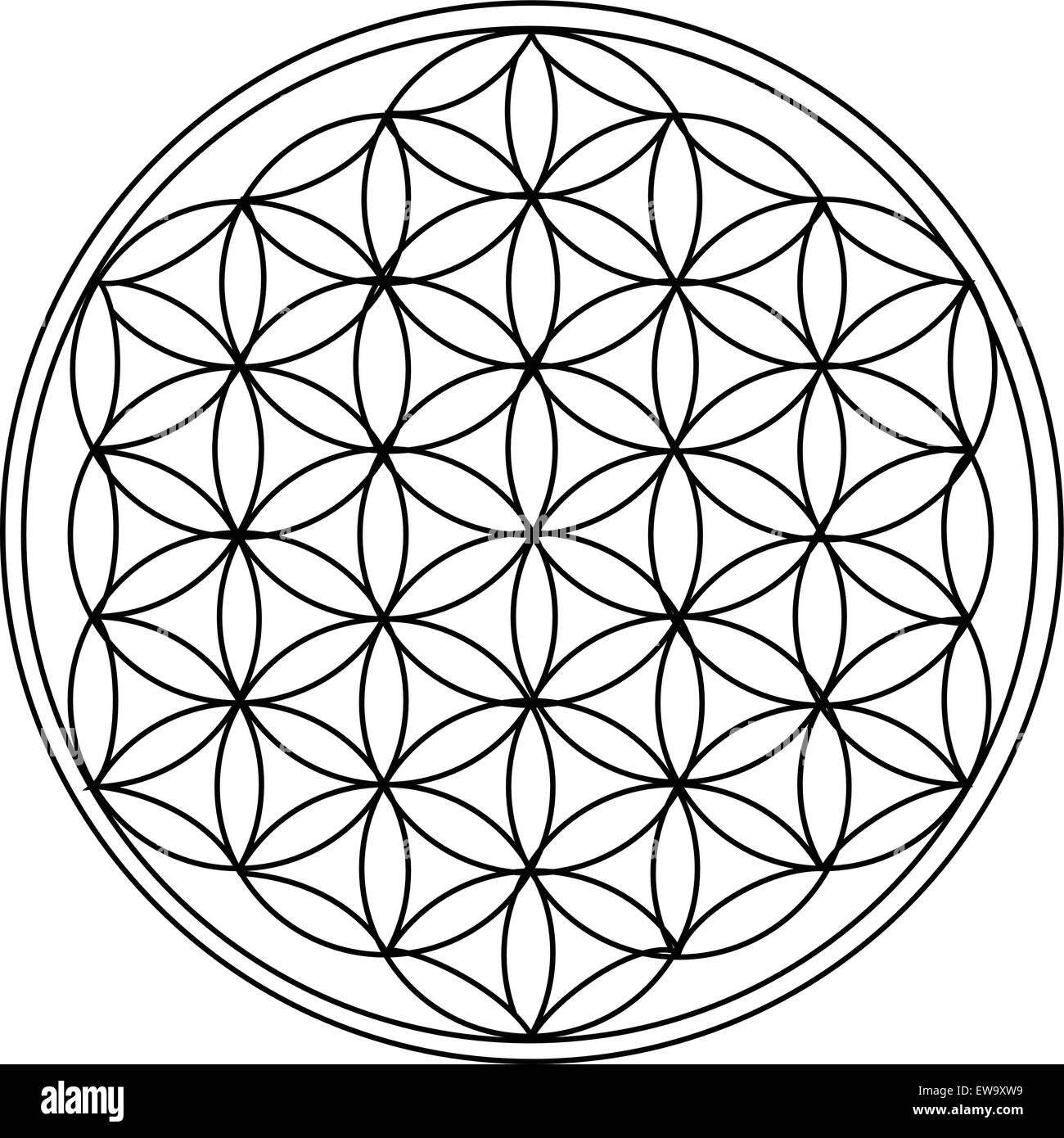 The Flower of Life - Stock Image