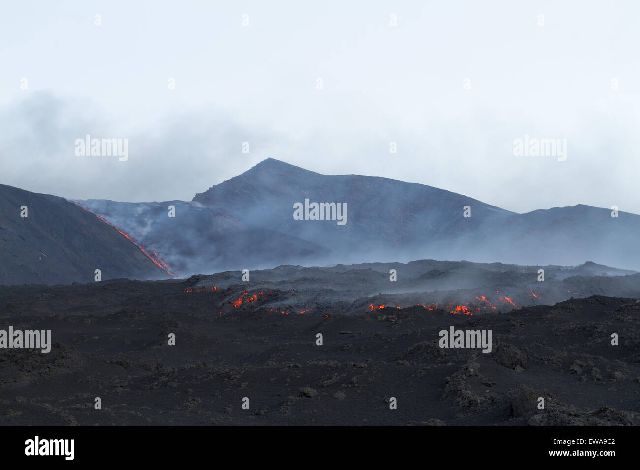 Lava field - Stock Image