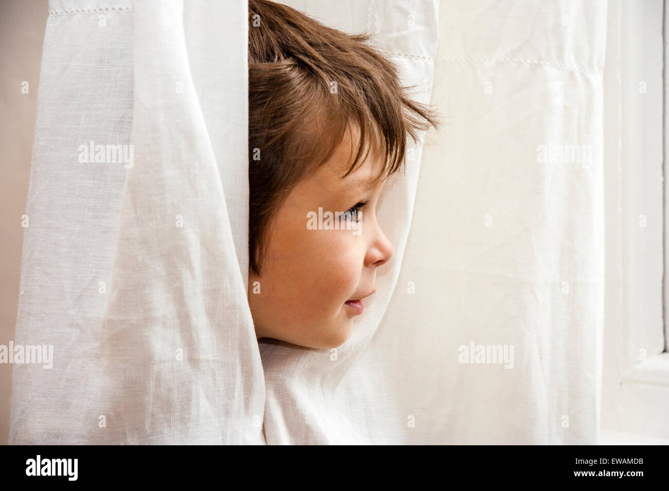 3 to 5 year old Caucasian boy. Indoors. Face poking out through net curtains, ruffled hair. Side-view - Stock Image