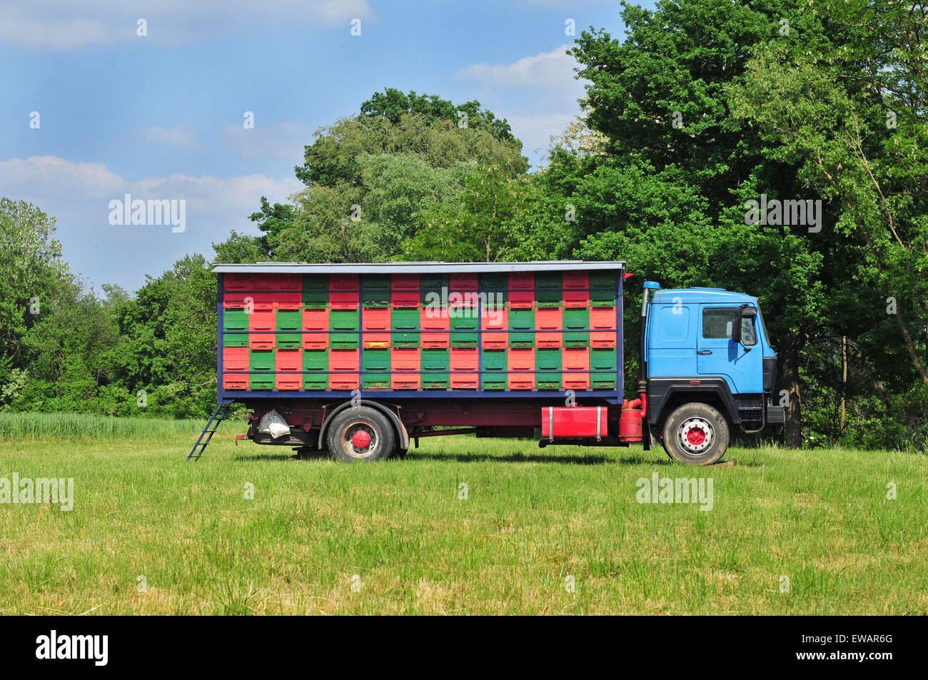 Mobile apiary parked in meadow - Stock Image