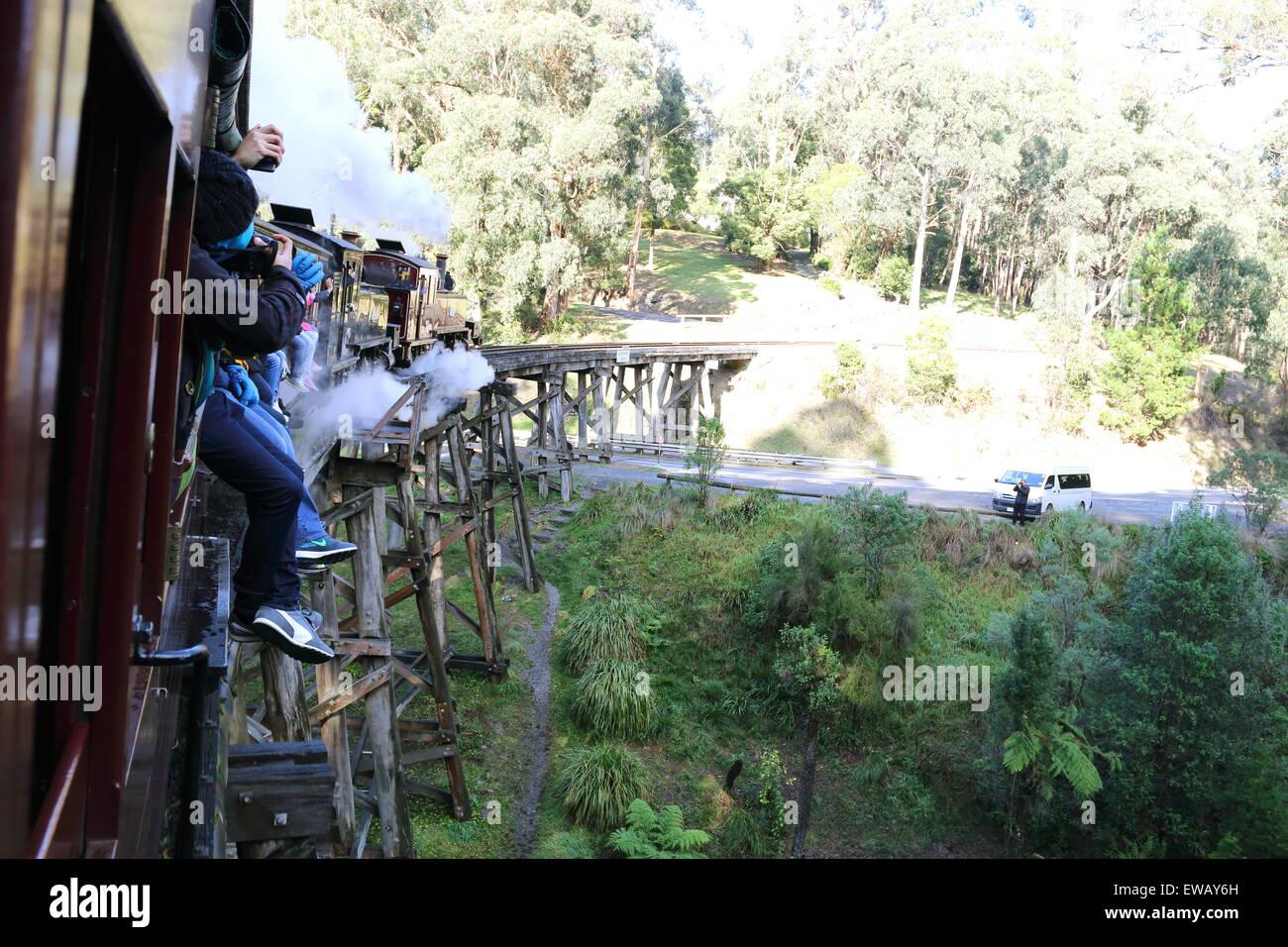 Puffing Billy steam train running on Trestle Bridge Belgrave Victoria Australia - Stock Image