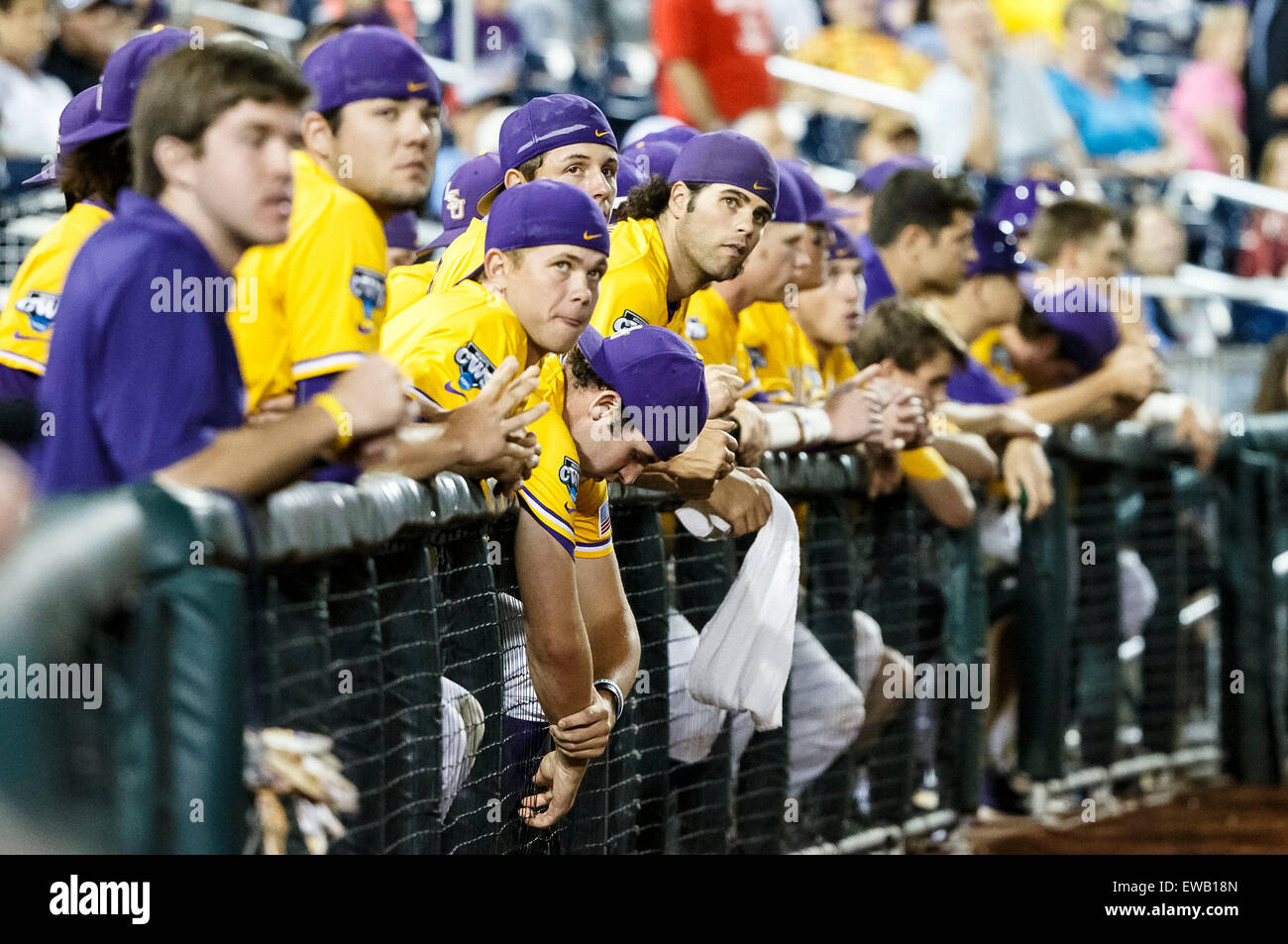 buy online 13f35 0dc8c June 18, 2015  LSU bench late in action during game 10 of the 2015