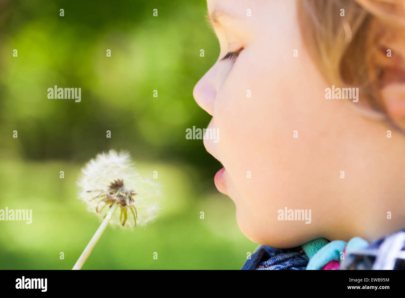 Caucasian blond baby girl and dandelion flower in a park, selective focus on lips - Stock Image
