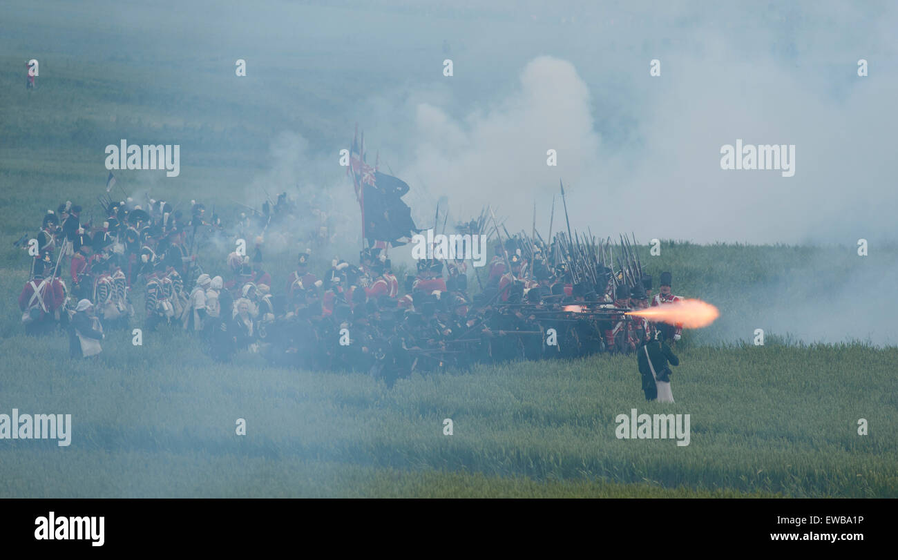 Spectacular reenactment of the Battle of Waterloo on the original battlefield in Belgium to commemorate Waterloo - Stock Image