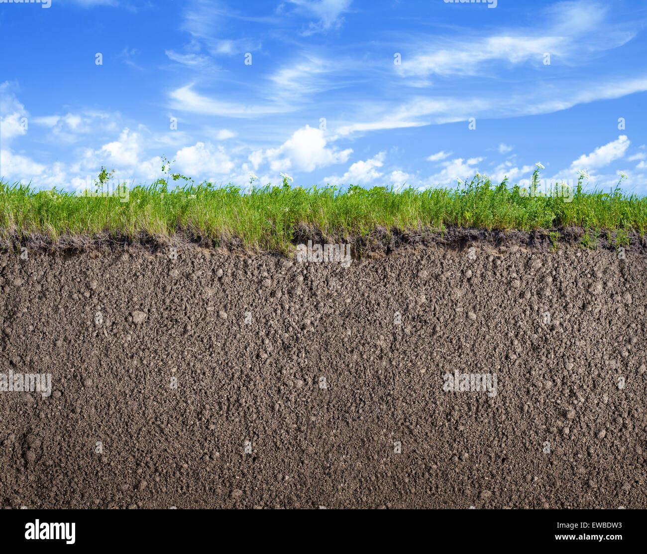 Soil Ground, Grass And Sky Nature Background Stock Photo