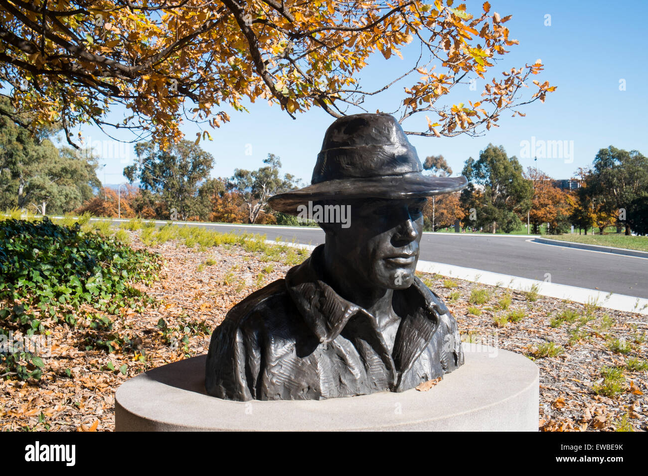 bust of wallace anderson great australian sculptur at the Australian war memorial in Canberra , Australia - Stock Image