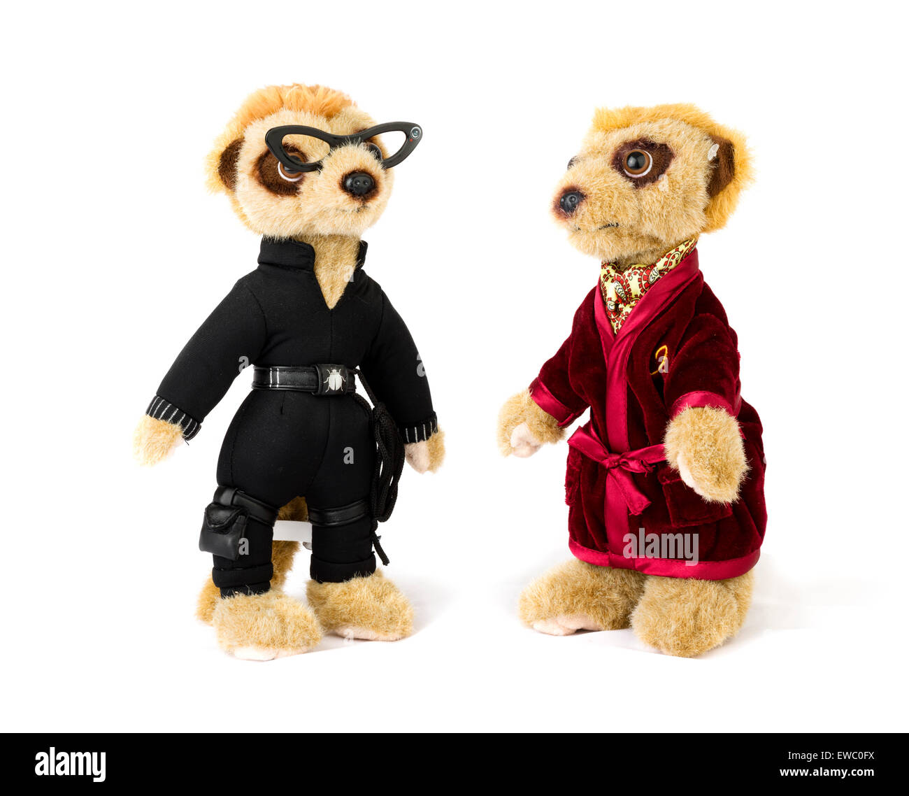 Aleksandr Orlov and Agent Maiya meerkat toys from Comparethemarket.com price comparison website, UK - Stock Image