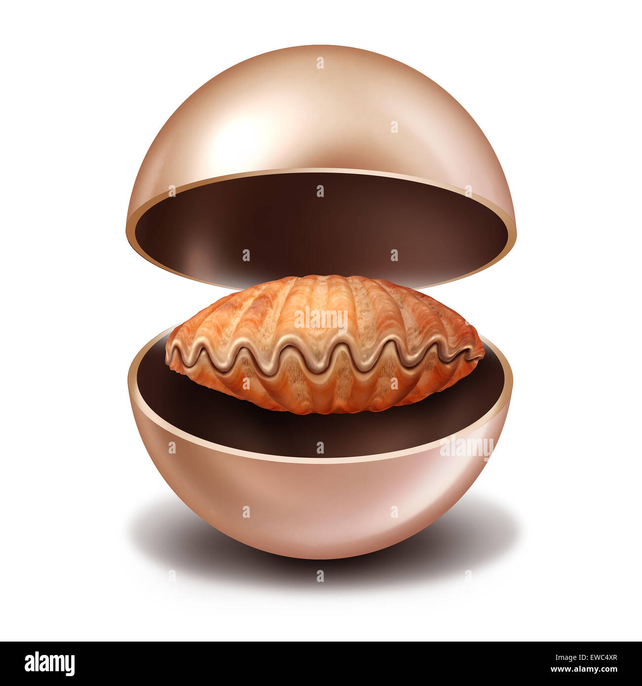 Reversal of fortune as an open rare pearl with a sea shell inside as a contrarian metaphor for economic or financial - Stock Image