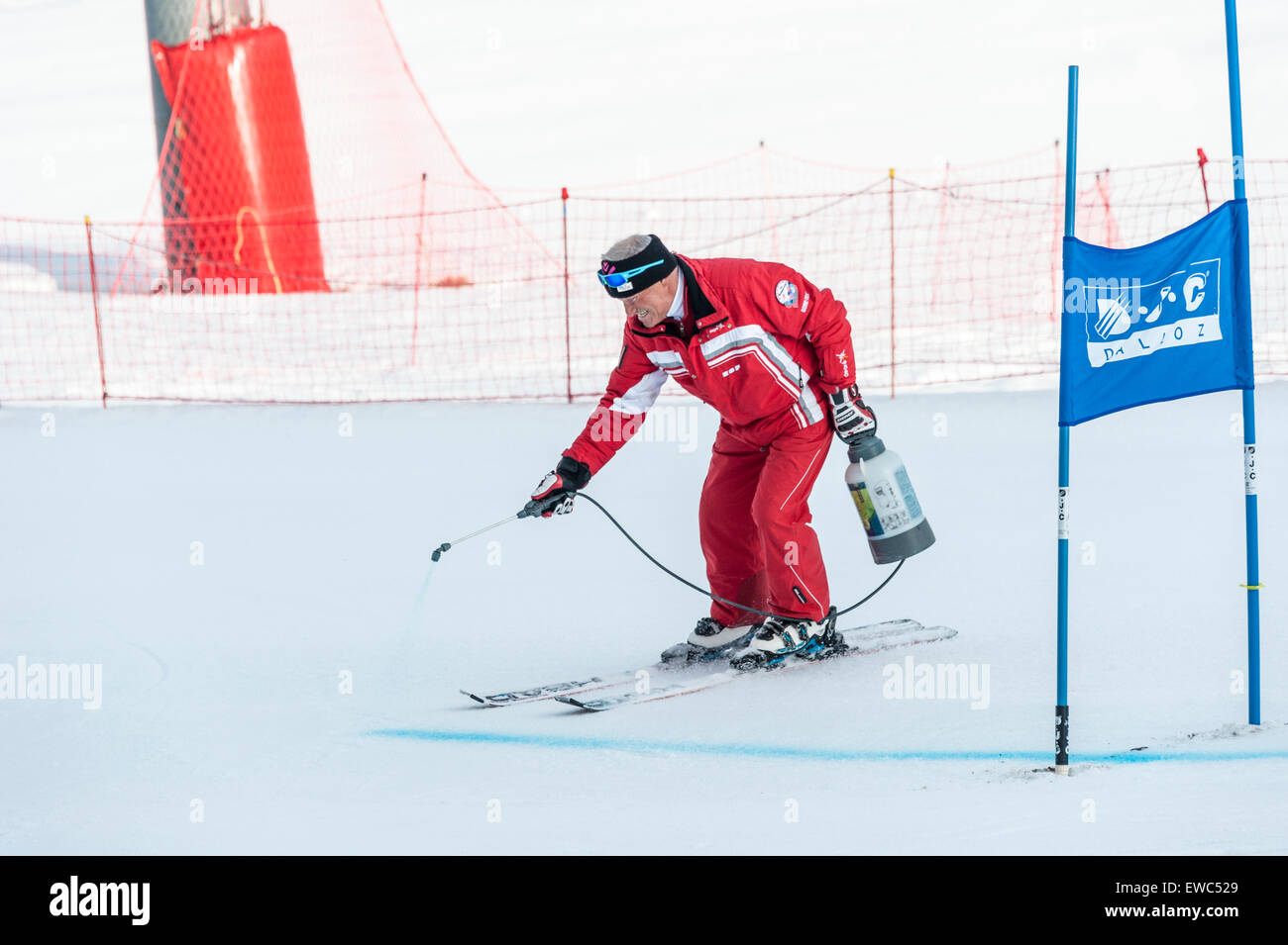 A course marshal marking the ski piste with blue dye, at a giant slalom race gate, before a race begins. - Stock Image