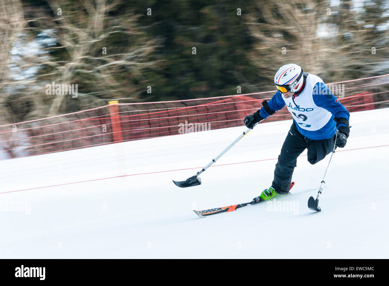 A disabled competitor using specially-adapted ski equipment, racing downhill. - Stock Image