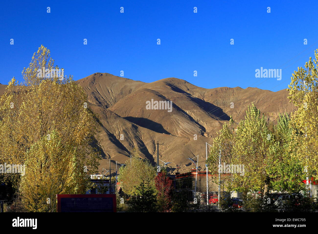 Tall trees in the early autumn and the mountains surrounding the lower town area at 3997 ms. Gyantse city and county - Stock Image