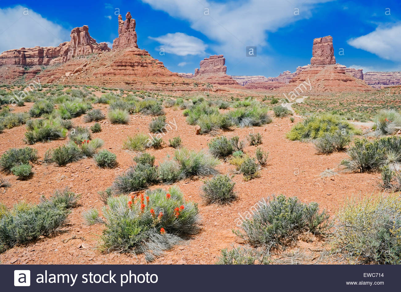 Valley of the Gods, Utah, USA, North America - Stock Image
