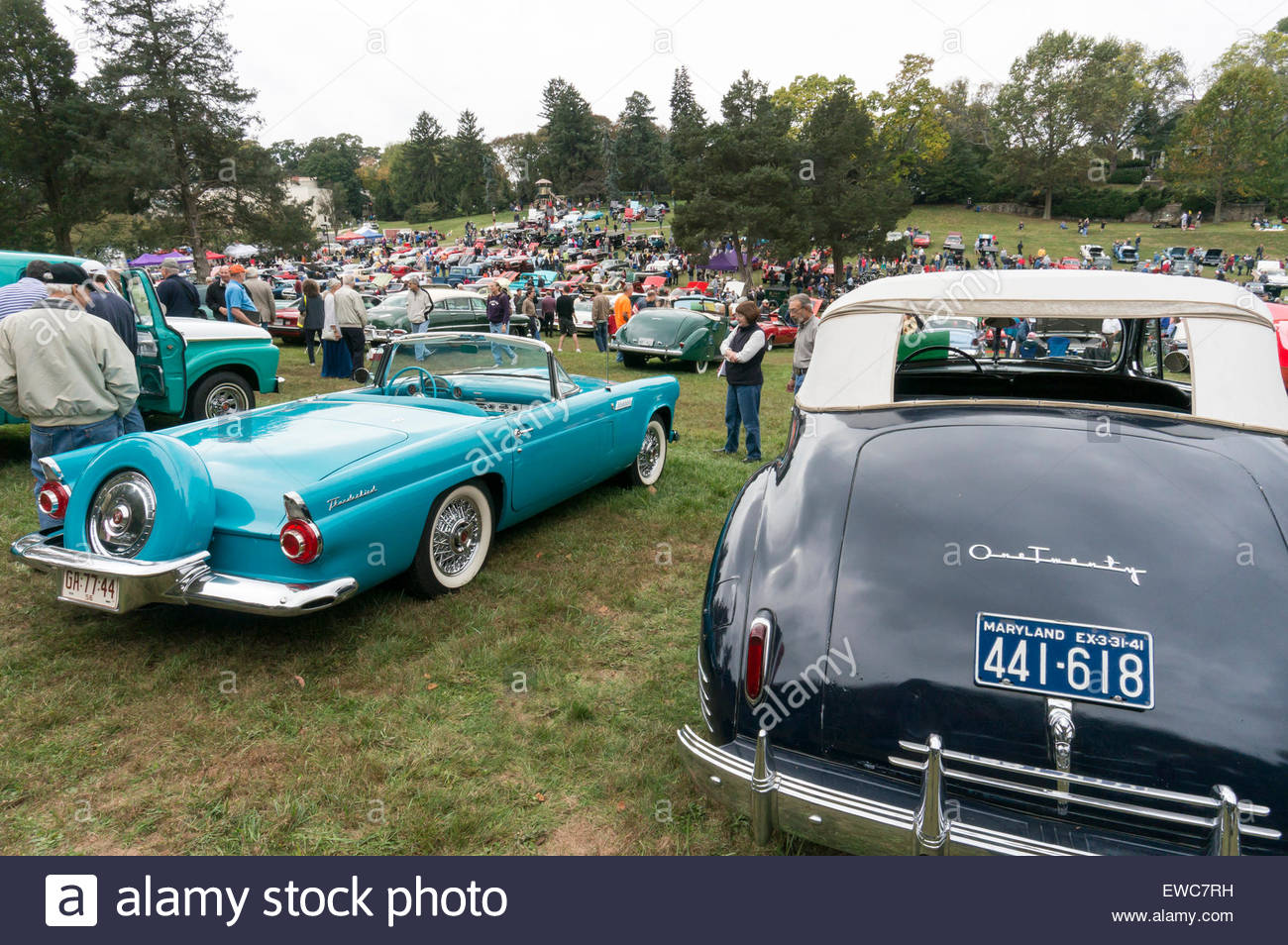 A 1941 Packard 120 and 1956 Ford Thunderbird convertibles at the 2014 Rockville Antique & Classic Car Show in - Stock Image