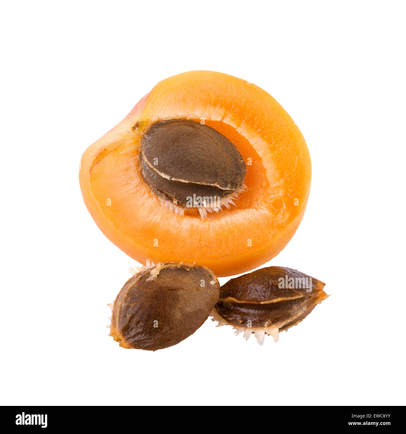 Apricot half with core - Stock Image