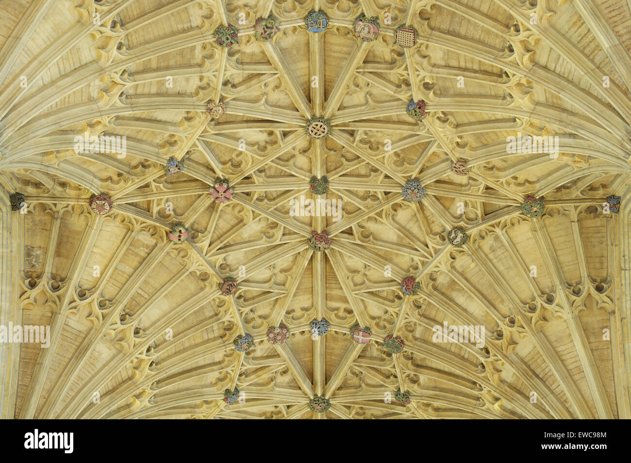 The magnificent medieval Gothic fan vaulted ceiling of Sherborne Abbey with its colourful ornamental bosses. Dorset, - Stock Image