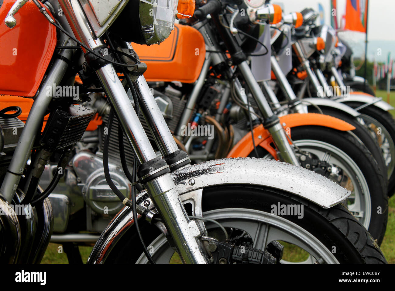 Row of motorbikes in a field - Stock Image