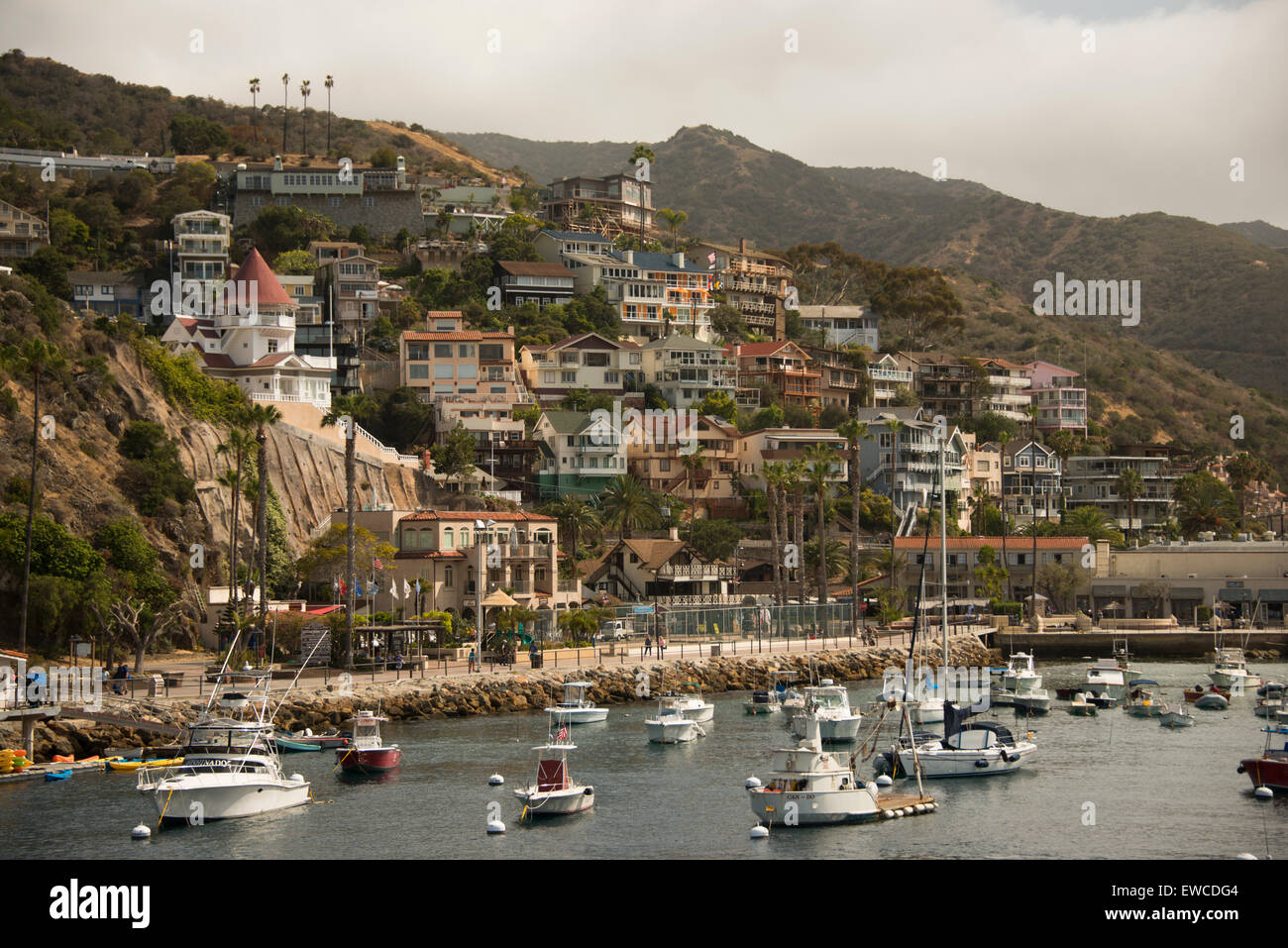 Avalon Harbor Catalina island off the coast of Southern California USA - Stock Image