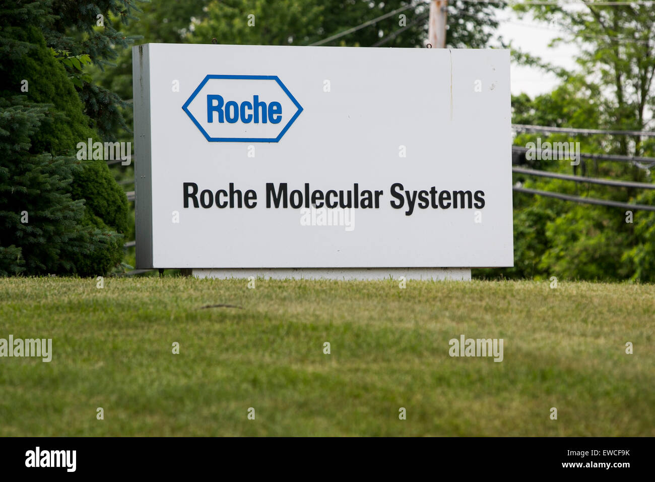 A logo sign outside of facility occupied by Roche Molecular Systems in Branchburg, New Jersey. - Stock Image