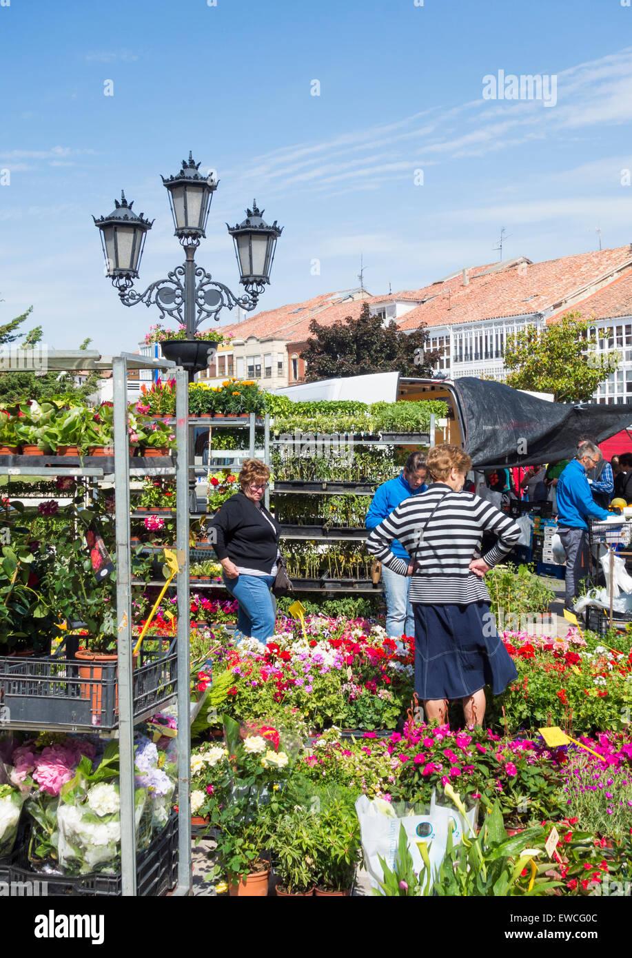 Weekly market in Aguilar de Campoo, Palencia province, Spain - Stock Image