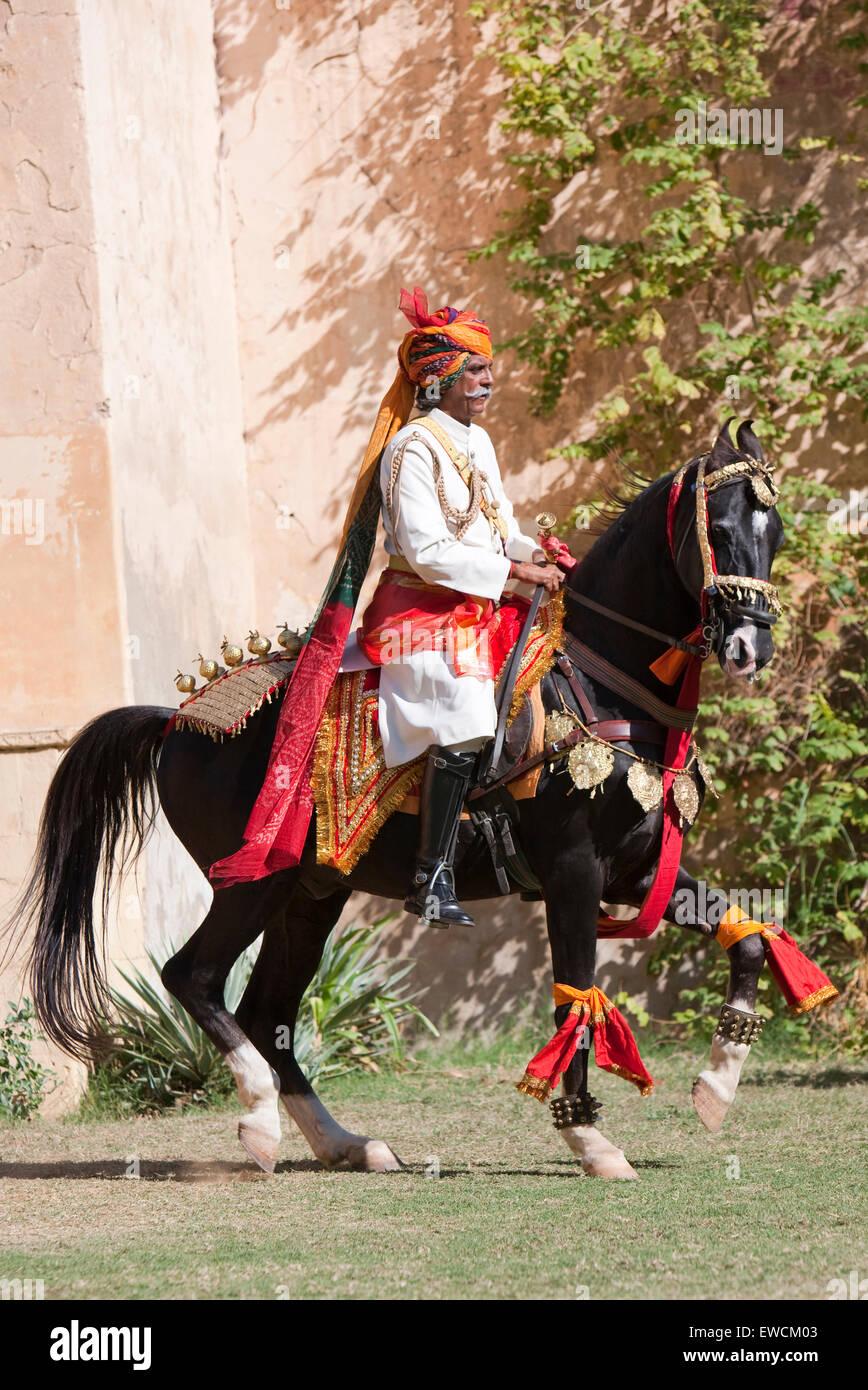 Marwari Horse. Black stallion as dancing horse with rider. Rajasthan, India - Stock Image
