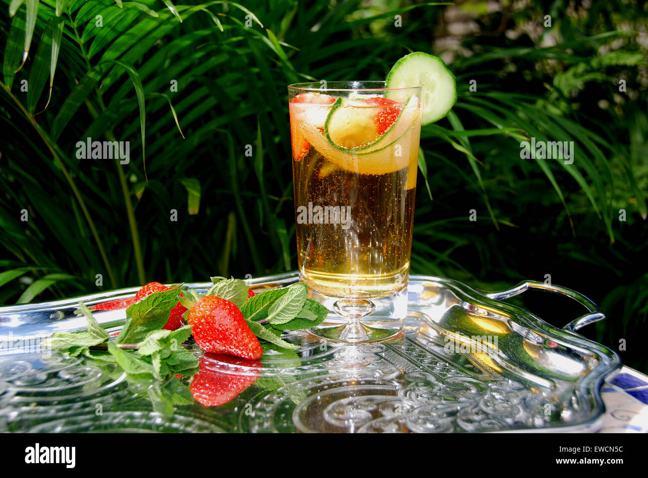 PIMMS Summer drink,set on a silver tray. A cocktail of fresh fruit, mint,cucumber lemonade and alcohol. - Stock Image