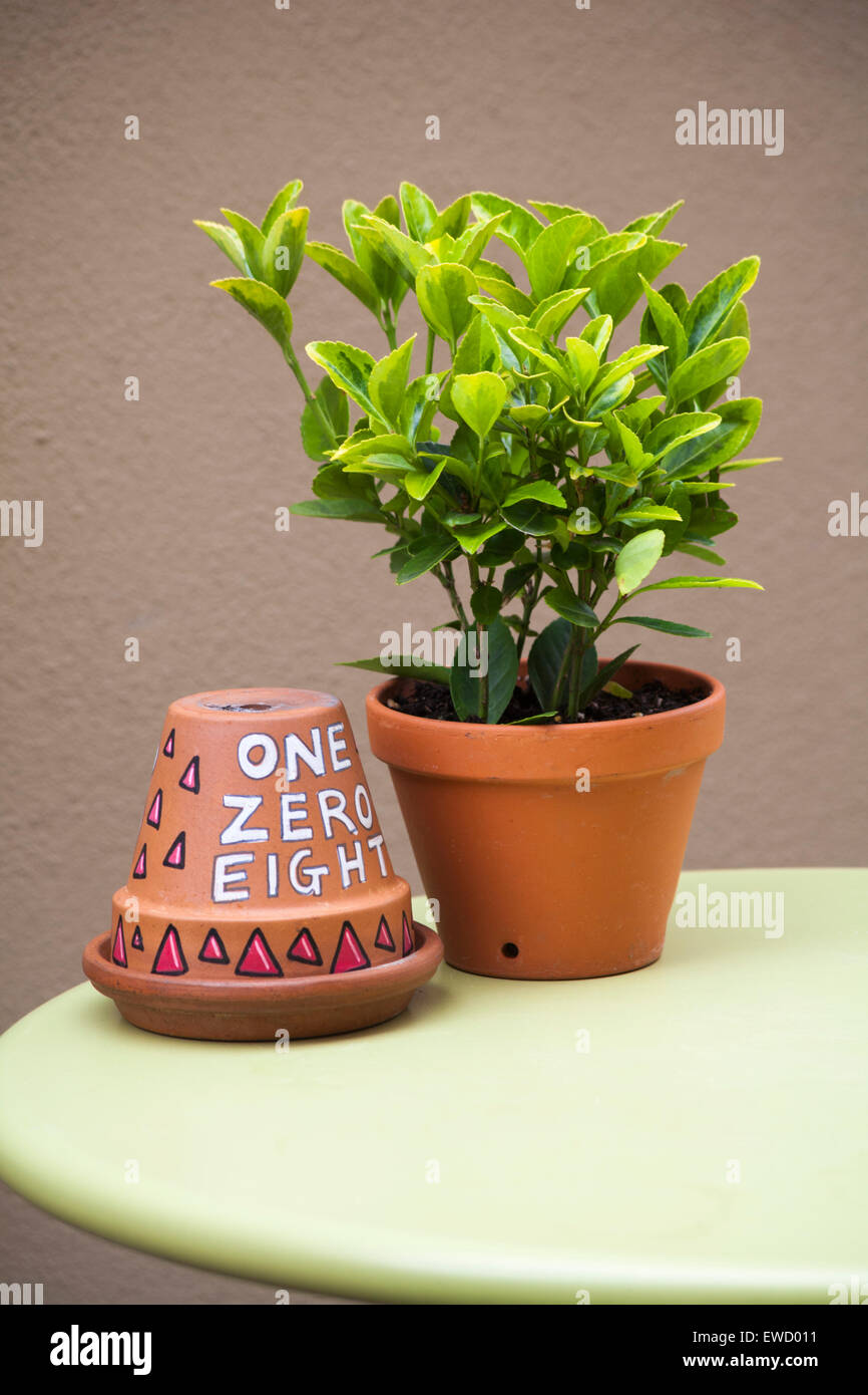 Alamy & Upside down flower pot painted with number one zero eight for table ...
