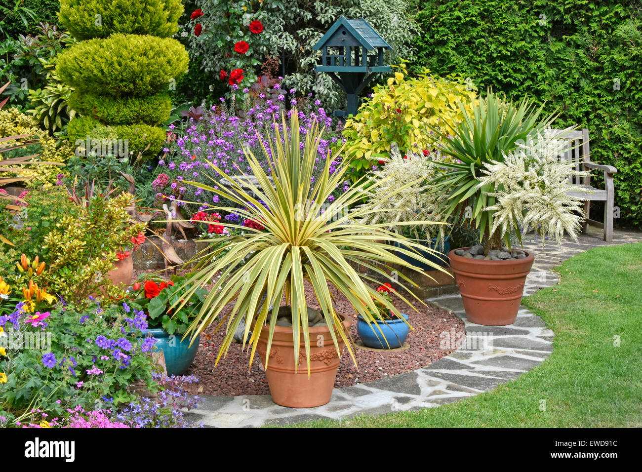 Back Garden Mixed Planting For Colour Effect Potted Plants For