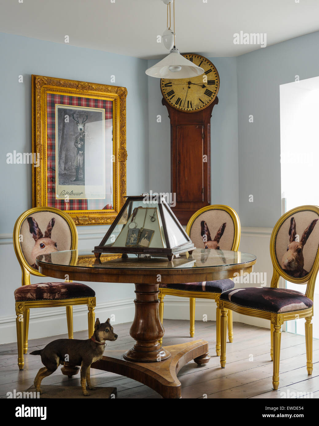 Three gilt dining chairs covered in Cory Visitorian hare head fabric round circular table in room with antique clock - Stock Image