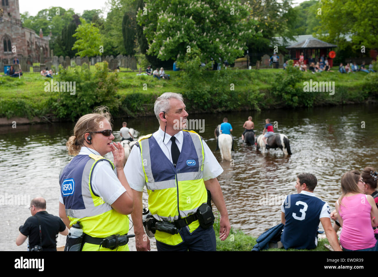 RSPCA officials at the Appleby horse fair, making sure no animals are ill treated. UK - Stock Image