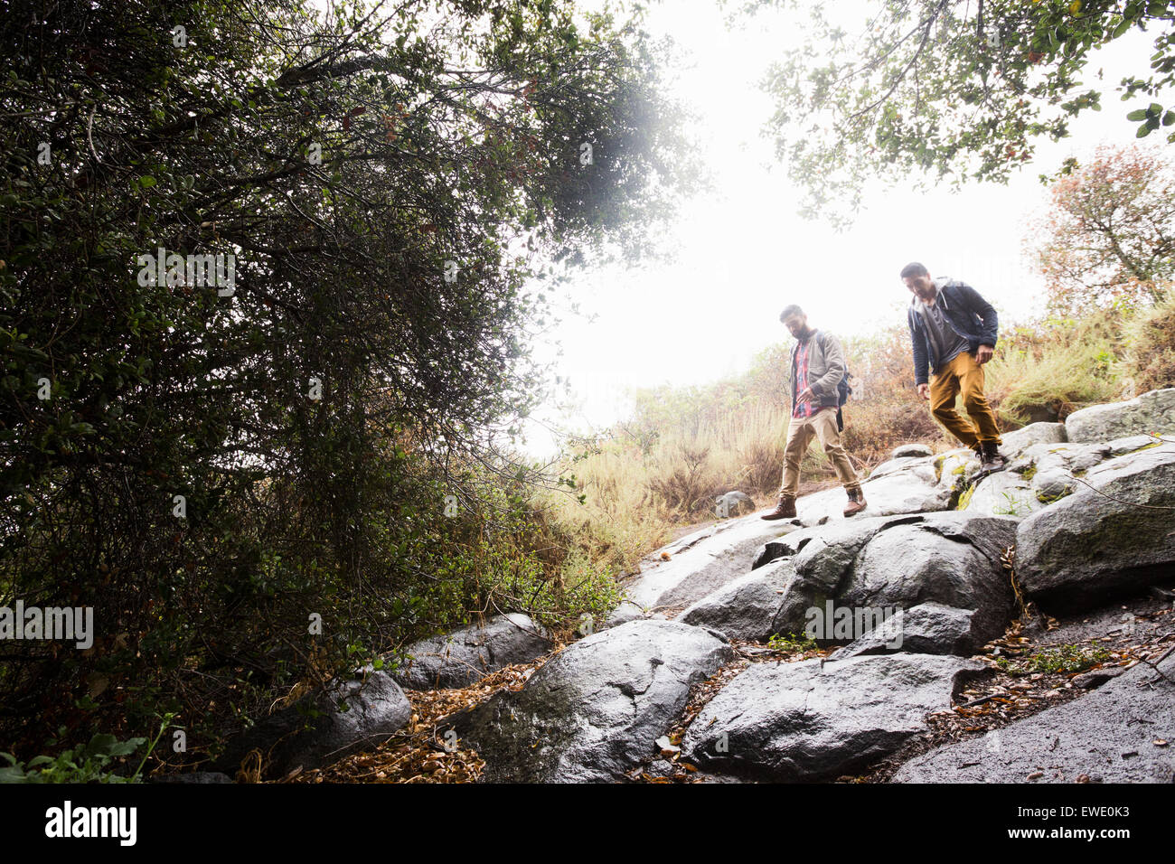 Two young men carrying backpacks hiking Stock Photo